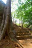 Ancient staircase in Sigiriya, Sri Lanka Royalty Free Stock Images