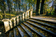 Ancient stairs in park Royalty Free Stock Photos