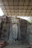 Ancient standing Buddha image, Gal Vihara Royalty Free Stock Photo
