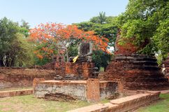 Ancient statue of Buddha in ruins, inside an old temple. Ayutthaya, Thailand royalty free stock photo