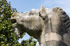 Ancient statue of horse in baths of Diocletian (Thermae Diocletiani) in Rome. stock photo