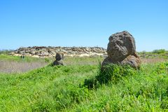Ancient statue of Polovtsian stone woman or boundary stone in th. E steppe near the archaeological reserve `Stone Tomb` in Zaporizka oblast, Ukraine Royalty Free Stock Image