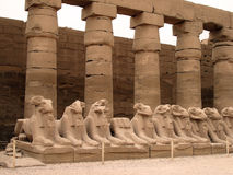Ancient statues in a Egypt Stock Images