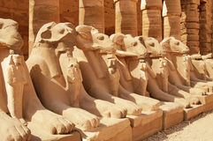 Ancient statues in the Karnak Temple. Luxor stock image
