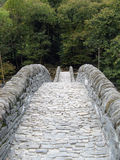 Ancient stone bridge Stock Images