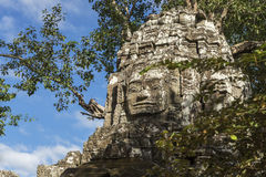 Ancient stone Buddha's face in forest of Angkor Cambodia Stock Photos
