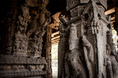 Ancient stone carvings in Varadaraja Temple Royalty Free Stock Photo