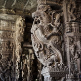 Ancient stone carvings in Varadaraja Temple Royalty Free Stock Photography