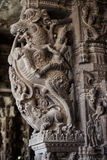 Ancient stone carvings in Varadaraja Temple Stock Images