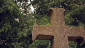 Ancient stone cross against the background of fluttering tree branches.  stock video footage