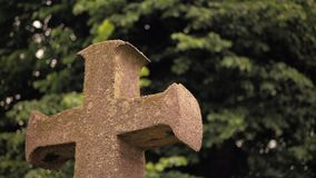 Ancient stone cross against the background of fluttering tree branches.  stock footage