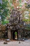 Ruins of ancient buddhist khmer temple. Ancient stone door and tree roots in ruins of buddhist khmer temple near Siem Reap, Cambodia Stock Photo