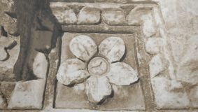 Ancient stone flower on the ruins of the bath in Tunisia stock images