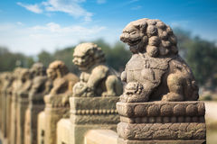 Ancient stone lion closeup Royalty Free Stock Photos