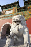 Ancient stone lion and red chinese building Royalty Free Stock Photography