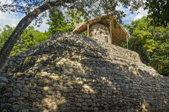 Ancient stone mayan pyramid lost in forest, Mexico. Ancient  mayan temple with a hut on the top Royalty Free Stock Photography