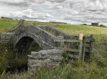 An ancient stone medieval packhorse bridge. In colden near hebden bridge in west yorkshire in pennine moorland landscape with grazing sheep and ruined farm Stock Photo
