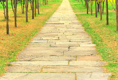 Ancient stone path in garden Royalty Free Stock Images