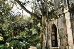 Ancient stone ruins in a leafy garden of Sintra stock photo