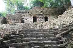 Ancient Mayan stone ruins at Yaxchilan, Chiapas, Mexico. Ancient stone ruins at Yaxchilan in southern Chiapas, Mexico Royalty Free Stock Photo