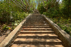 Ancient stone staircase Stock Images