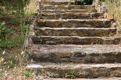 Ancient stone staircase in the Park Royalty Free Stock Photography