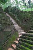 Ancient stone staircase in Sigiriya  Sri Lanka. Ancient stone staircase in Sigiriya King Castle Sri Lanka Royalty Free Stock Image