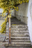 Ancient stone stairs Stock Photos