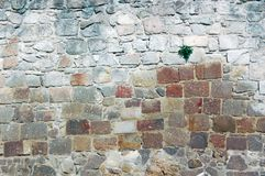 Ancient stone wall close up Stock Photos
