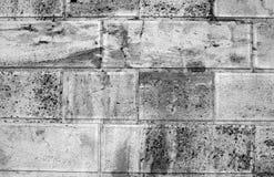 Ancient stone wall close-up. Stock Photos