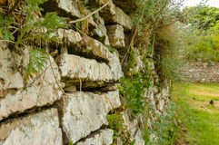Ancient stone wall Stock Image