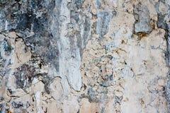 Ancient stone wall texture stock photo