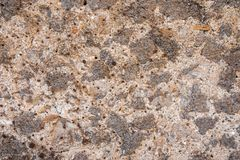 Ancient stone wall texture or background, from pompeii. Italy royalty free stock images