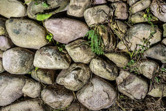 Ancient stonewall with some plants. Ancient stonewall without cement with some plants Royalty Free Stock Images