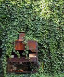 An ancient stove steeped in greenery. The ancient stove steeped in greenery Stock Photos