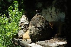 Ancient straw bee hive Stock Photo