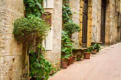 Ancient street decorated with flowers Stock Photography