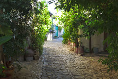 Ancient Street with flowers Royalty Free Stock Image