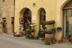 The ancient streets with the window of a little shop selling flowers in pots, Royalty Free Stock Photography