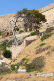 Ancient stronghold in Crete, Greece Stock Photos