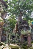 Ancient Ta Prohm or Rajavihara Temple Royalty Free Stock Image