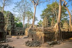 Ancient Ta Prohm temple at Angkor Wat complex Stock Photos