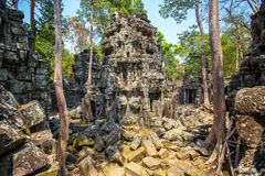 Ancient Ta Prohm temple at Angkor Wat complex Stock Photography
