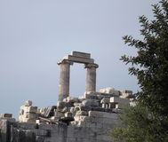 The ancient temple of Apollo. Didim Turkey Stock Photography