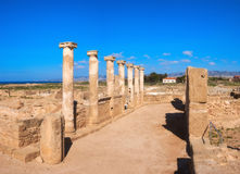 Ancient temple columns in Kato Paphos Archaeological Park in Pap Stock Image