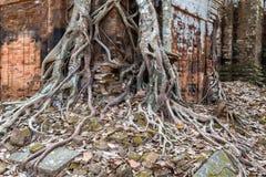 Ancient temple Koh Ke, Cambodia Stock Photos