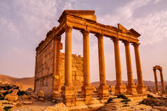 Ancient temple of Palmyra, Syria. Before the war started Royalty Free Stock Images