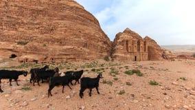 Ancient temple in Petra, Jordan Royalty Free Stock Photography