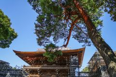 Ancient temple with pine tree garden stock images