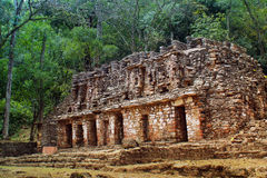 Ancient temple ruins in the jungle of southern Mexico Stock Images